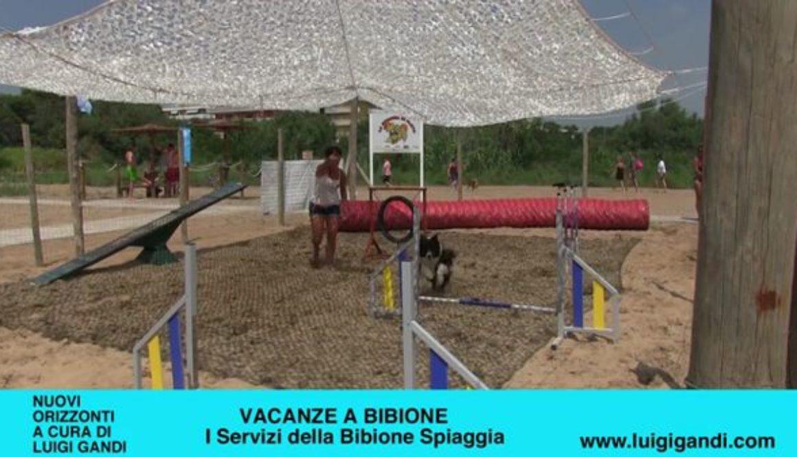 Vacanze_a_Bibione_2019_-_puntata_10_-_La_spiaggia_dei_cani_più_grande_d_Italia.3