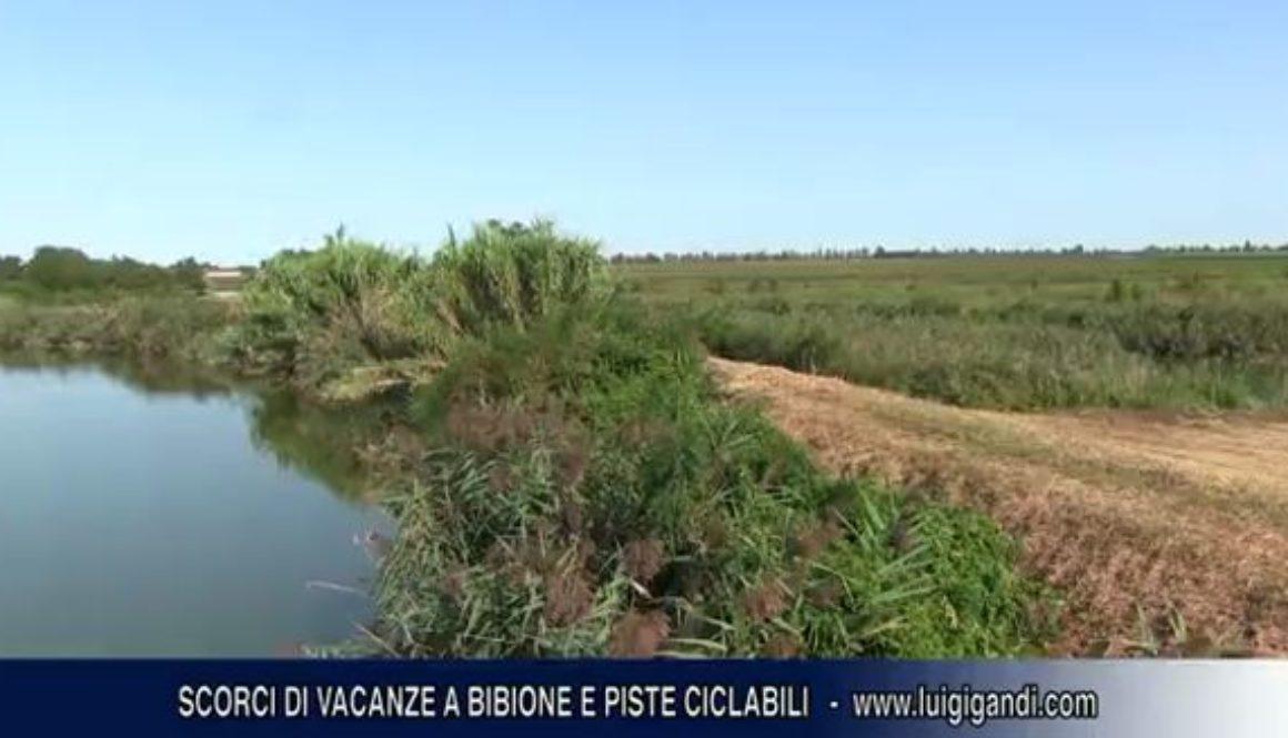 Piste_Ciclabii_Bibione_e_De_Pin.2