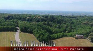 Vita_di_Montello_Il_Bosco_della_Serenissima_-_puntata_1.4