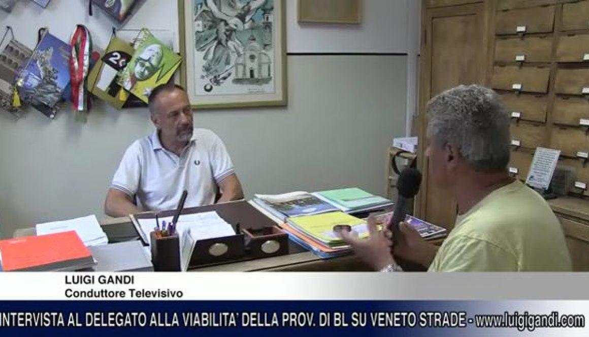 Fabio_Lucchetta_-_Provincia_di_Belluno_-_sui_lavori_Veneto_Strade